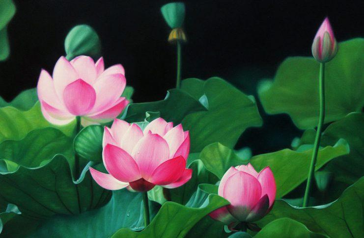 tin-hanh-nguyen
